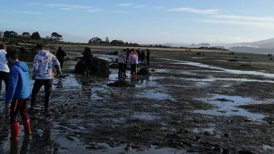 La pradera marina del complejo intermareal Umia-O Grove hace de aula para el IES As Bizocas