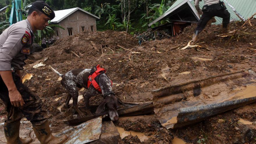Aumentan a 68 los fallecidos por el temporal de lluvias en Indonesia