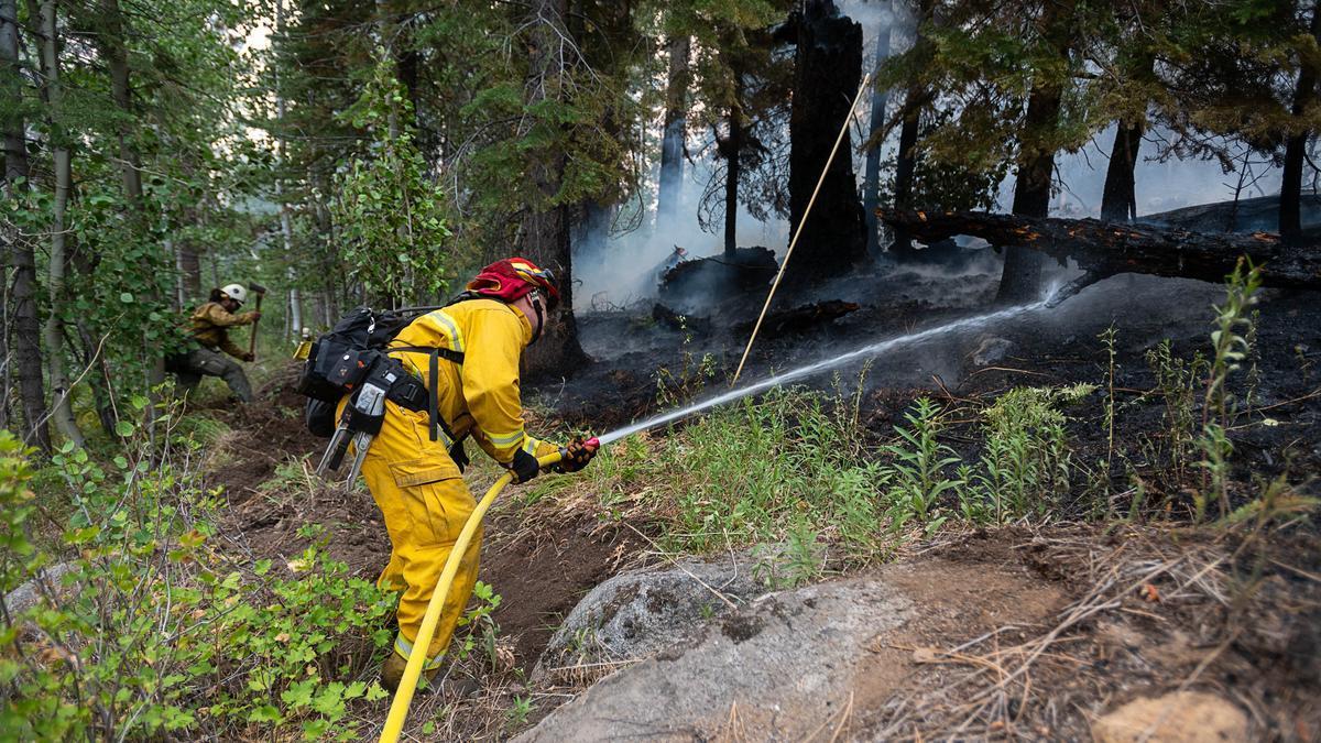 Imagen de archivo de bomberos trabajando en un bosque de California.