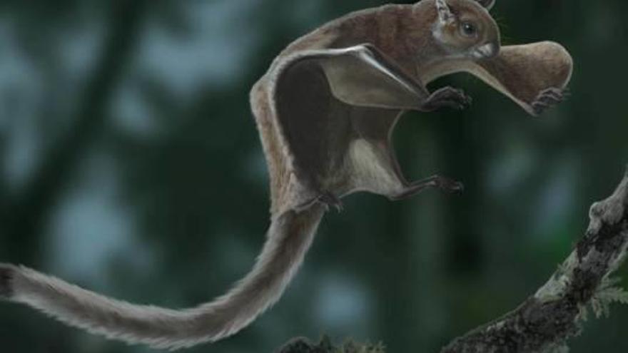 Troben restes fòssils de l'esquirol volador més antic als Hostalets de Pierola