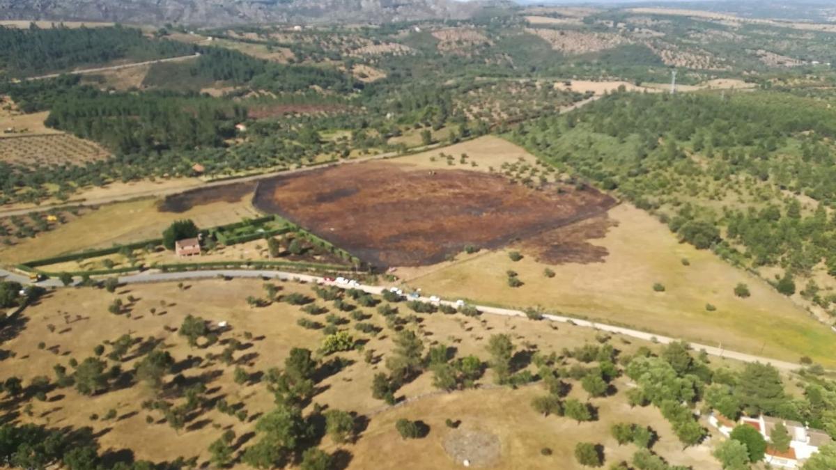 Efectos de un incendio forestal.