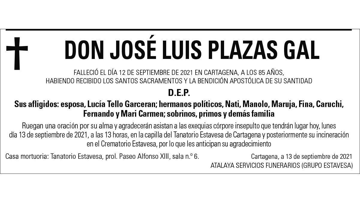 D. José Luis Plazas Gal