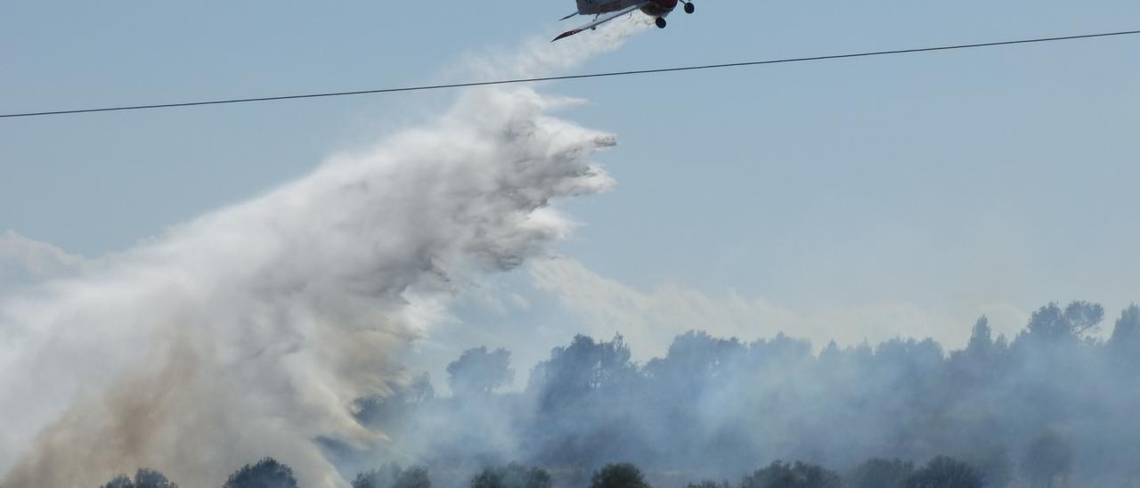 Un incendi ha cremat 2 hectàrees al costat de l'Ap7 a Vilafant