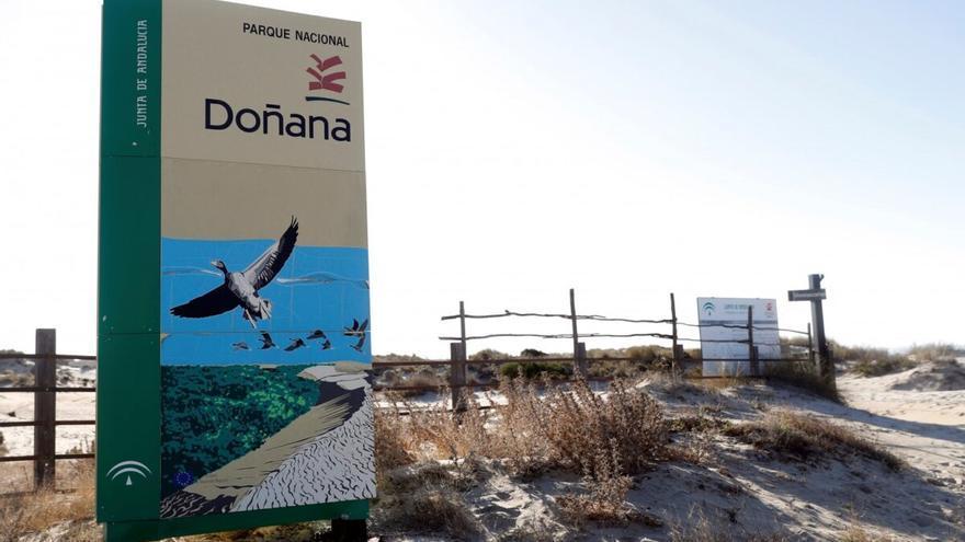 Varapalo del tribunal europeo a España por la mala gestión hídrica de Doñana