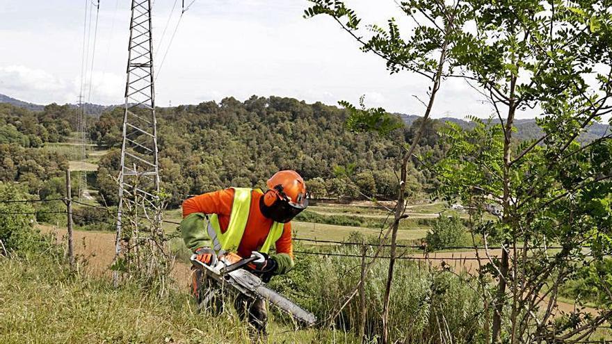 Endesa crea una app per a protegir els boscos del foc