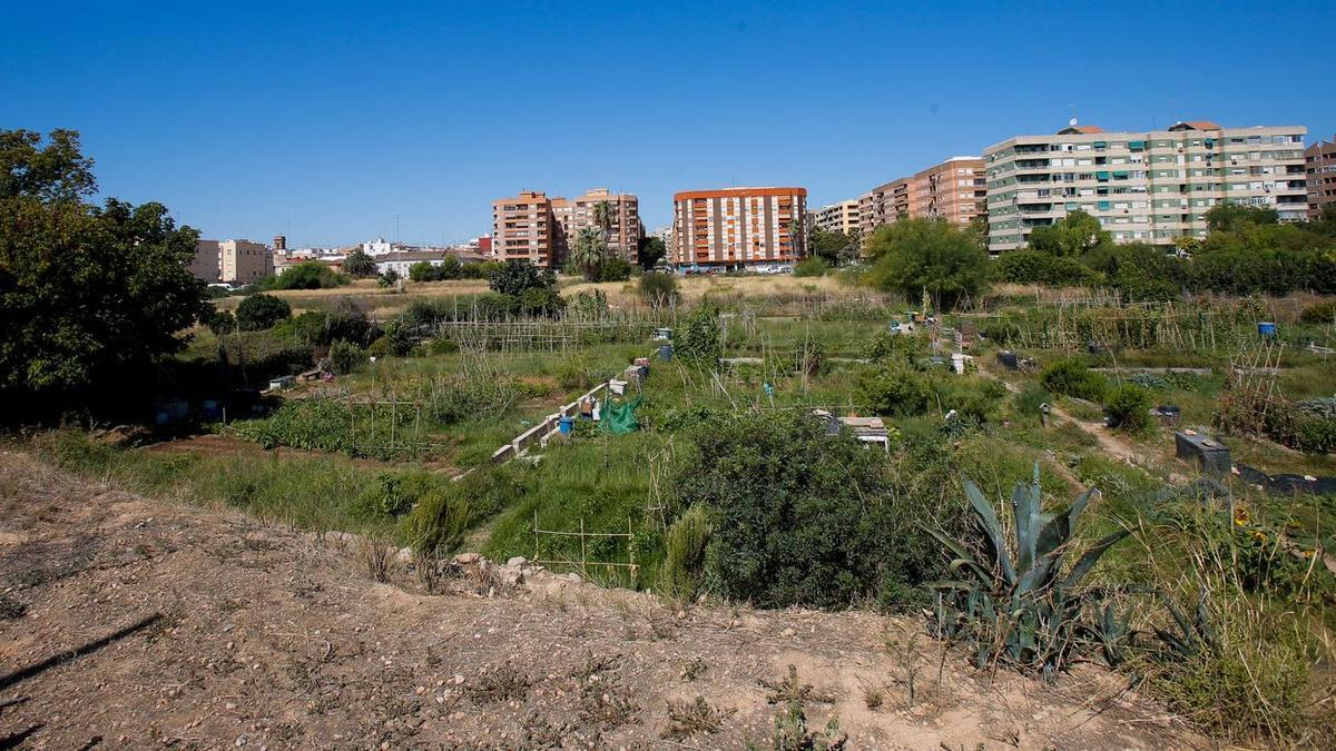 Urbanismo duplica la edificabilidad terciaria en Benimaclet y rebaja alturas