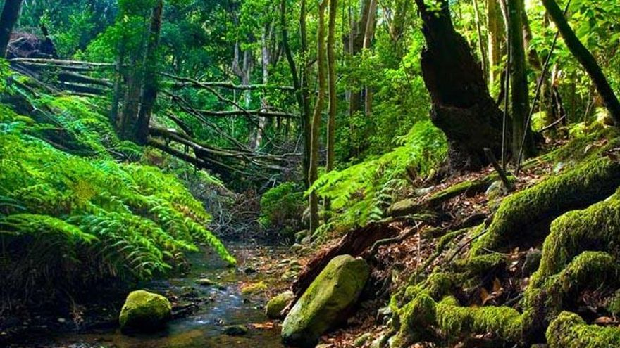 Canarias destina 300.000 euros a infraestructuras turísticas de La Gomera