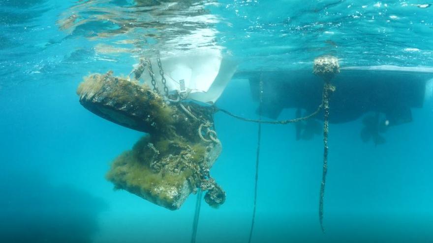 El sur de la bahía de portmany queda libre de más de 100.000 kilos de residuos