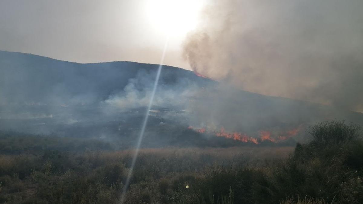 Tres helicópteros y 70 efectivos controlan el incendio en Fuente Álamo