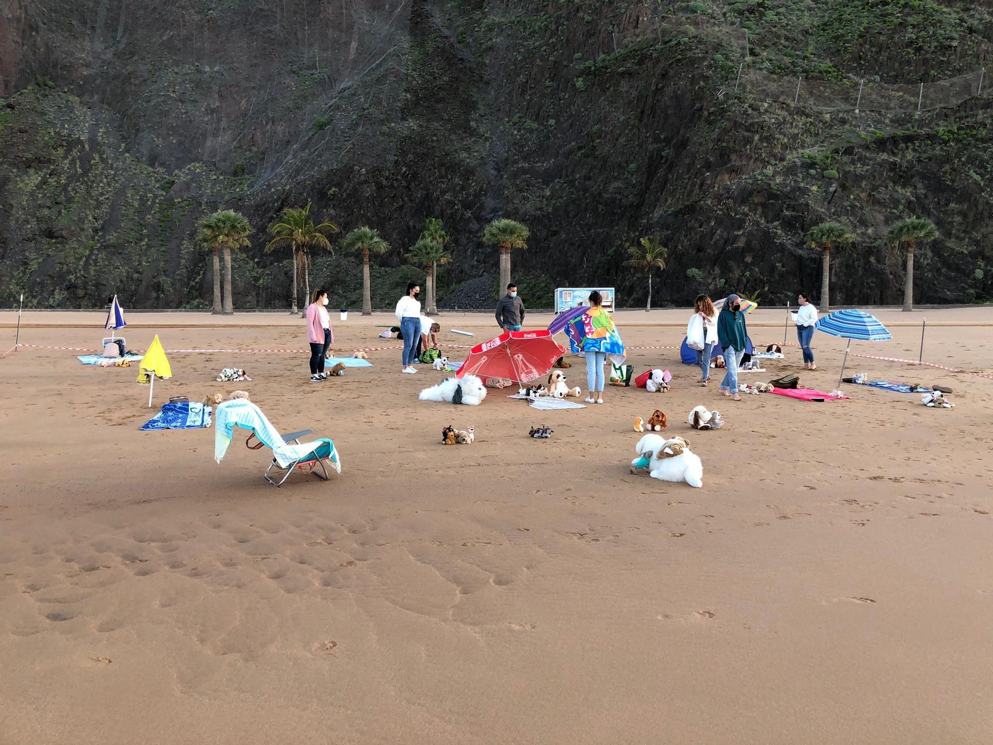 Acción pacífica en la playa de Las Teresitas en demanda de una zona para mascotas