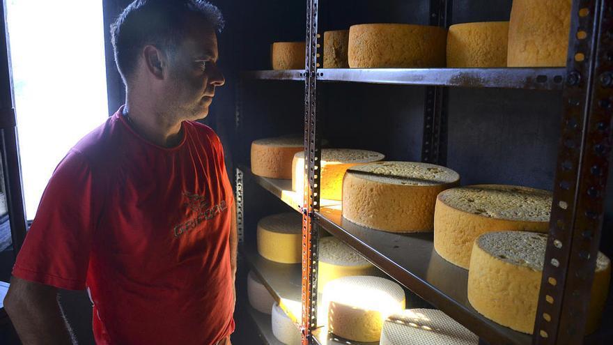 El primer quesero de la familia