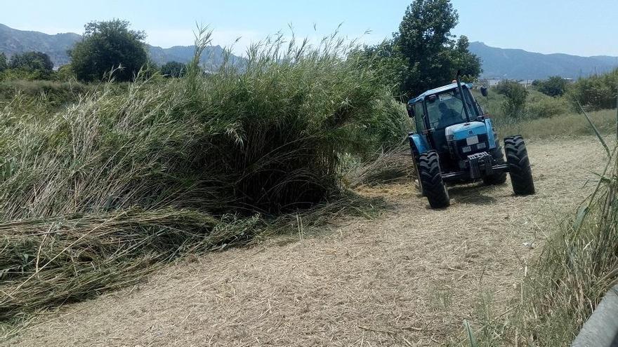 ANSE y Aguas de Murcia trabajan para fomentar la biodiversidad en La Contraparada