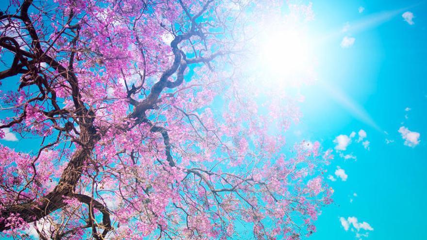 ¿A qué hora empieza la primavera?