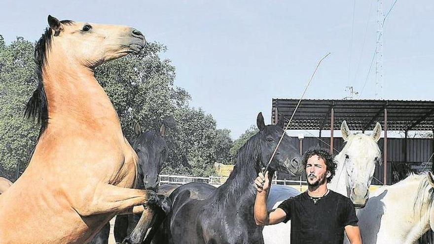 «El caballo es un animal que despierta pasiones»