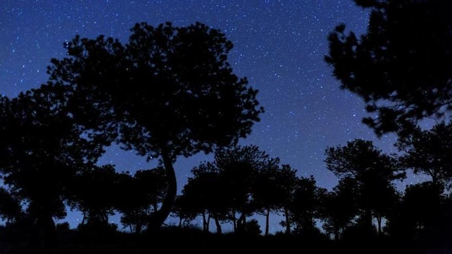 Córdoba quiere mejorar la visión del cielo nocturno limitando la contaminación lumínica
