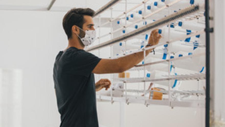 El textil de la provincia lidera los últimos avances tecnológicos en mascarillas