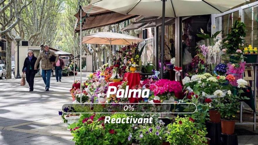 Ajuntament de Palma: Palma s'activa