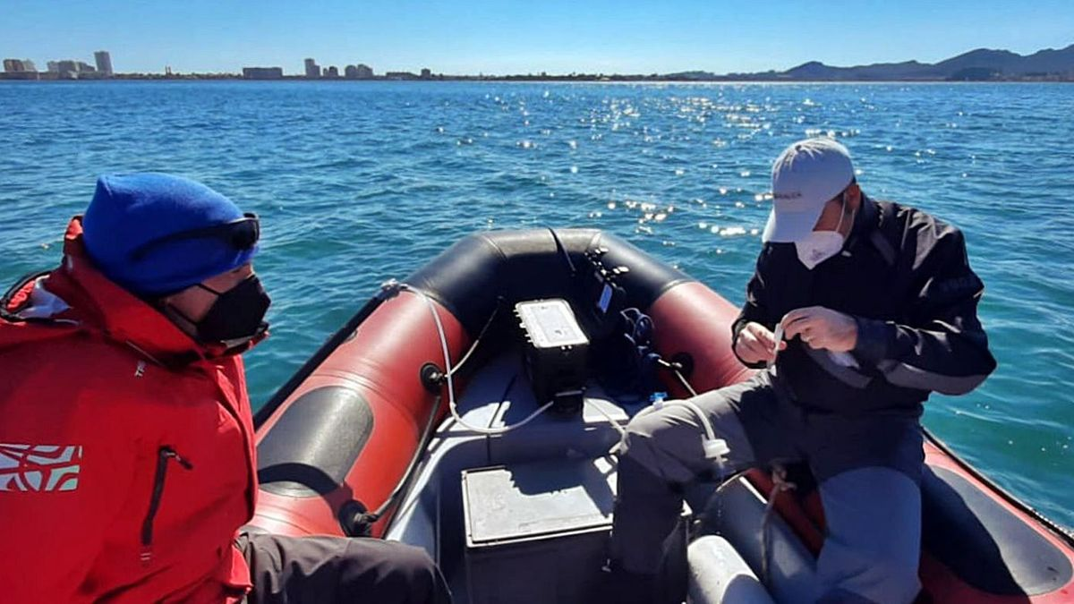 investigadores del IEO, en el Mar Menor   IEO