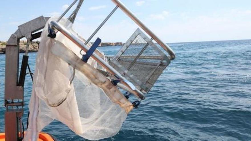 Die Müllboote um Mallorca sind wieder aktiv
