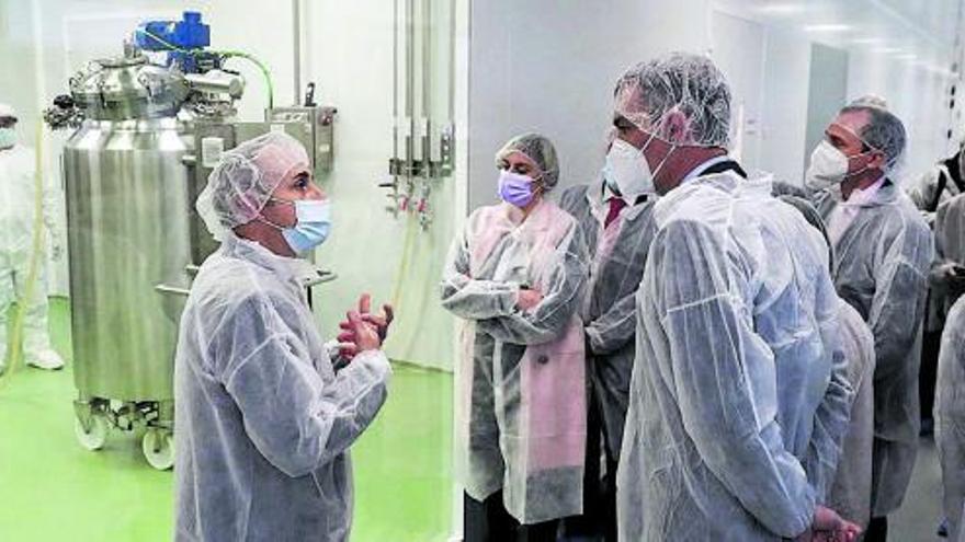 Más de 80 sociedades científicas piden a Gobierno y autonomías no parar la vacunación