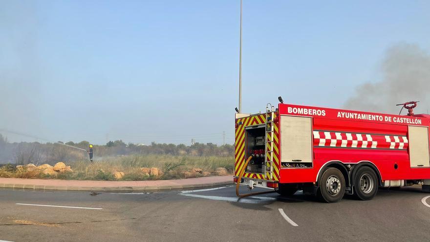 Se recupera de graves quemaduras un gatito rescatado del incendio en el PAU Sensal de Castelló