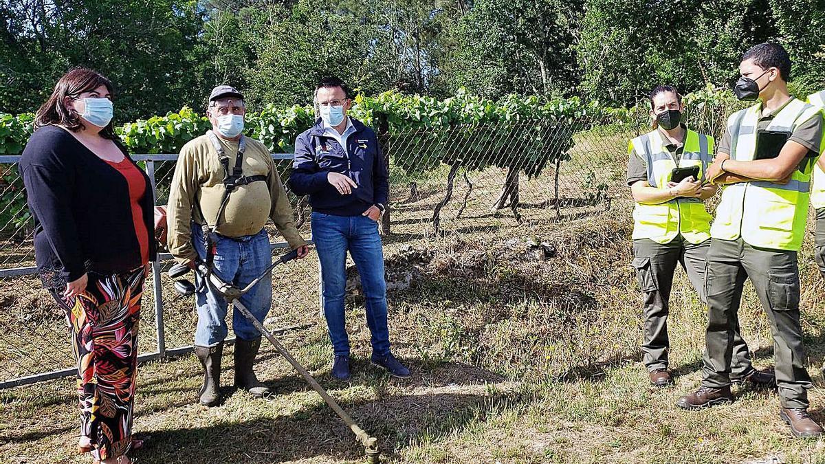 El conselleiro de Medio Rural, ayer en Boborás en la supervisión de las tareas de desbroce.     // L. O.