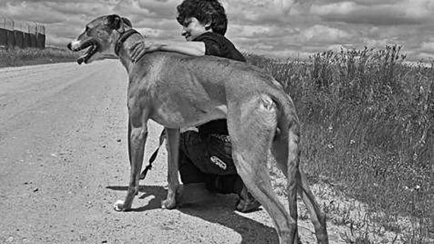 """Mar Sánchez: """"A la hora de adoptar, poca gente dice que quiere un perro que necesite ayuda"""""""