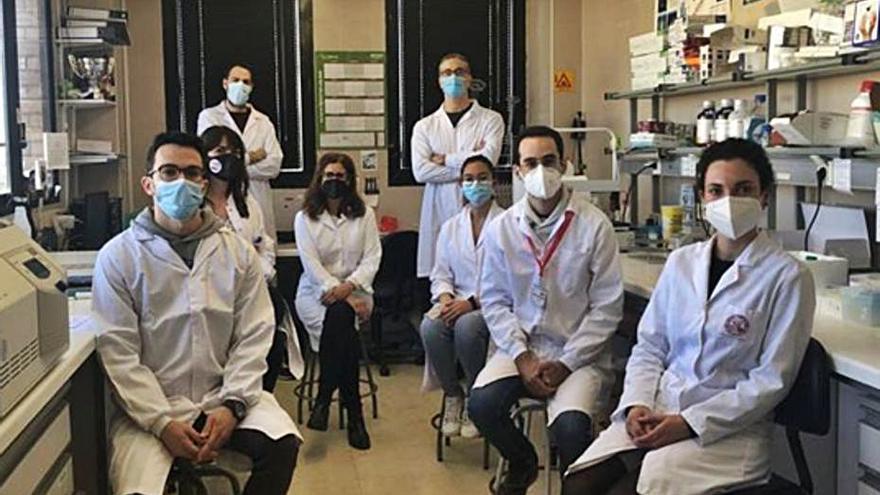 Científicos de la Universidad de Murcia descubren el mecanismo responsable de los procesos de alergia