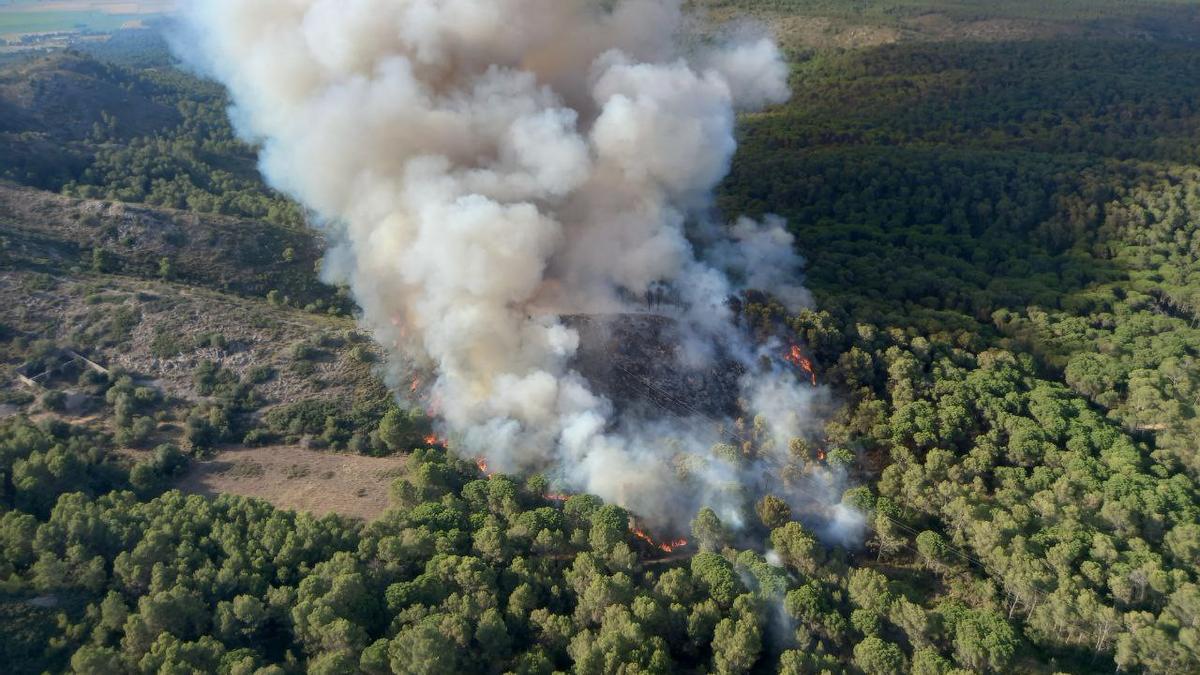 Imatge de l'incendi al massis del Montgrí, el 22 de juliol del 2021 (horitzontal)