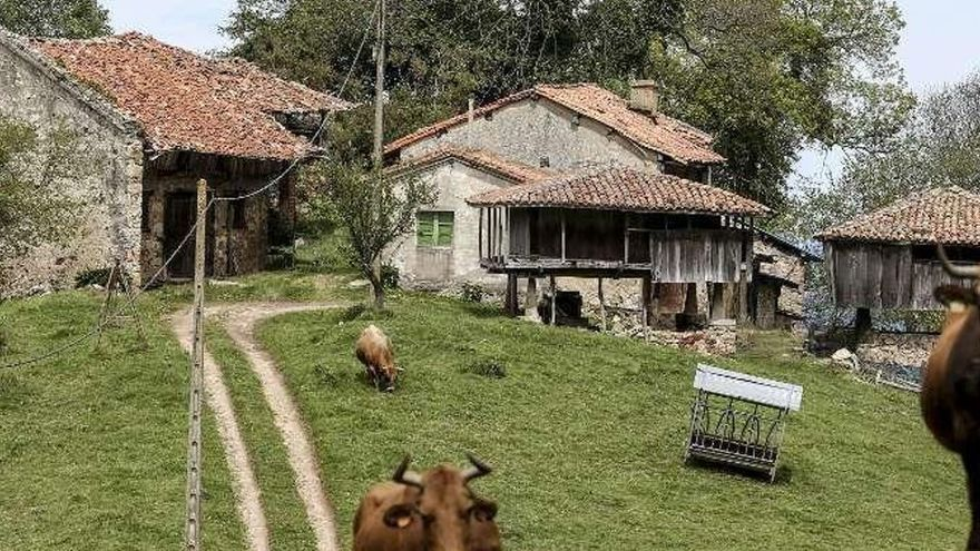¿Buscas un lugar abandonado? En la comarca avilesina hay 23