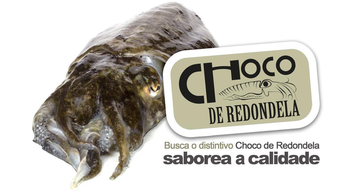 El exquisito molusco cefalópodo lucirá a partir de ahora acompañado de su etiqueta, distintivo de calidad.