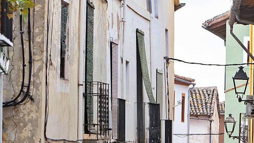 El censo canino de Xàtiva supera los 3.500 perros registrados