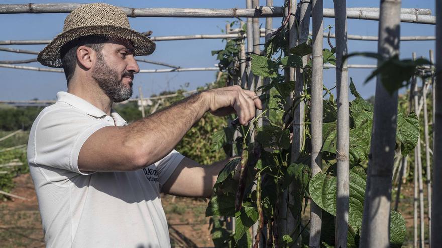 La agricultura tradicional se rebela