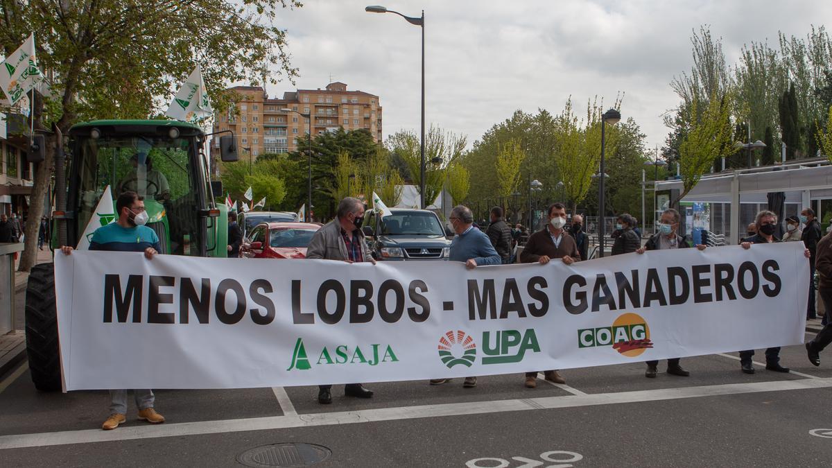 Manifestación de Asaja, UPA y COAG en abril contra la protección del lobo.