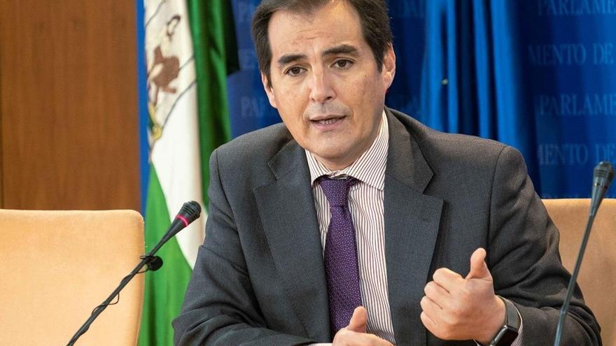 """PP-A no ve motivos para un adelanto electoral en Andalucía y considera que Vox está instalado en su """"interés particular"""""""