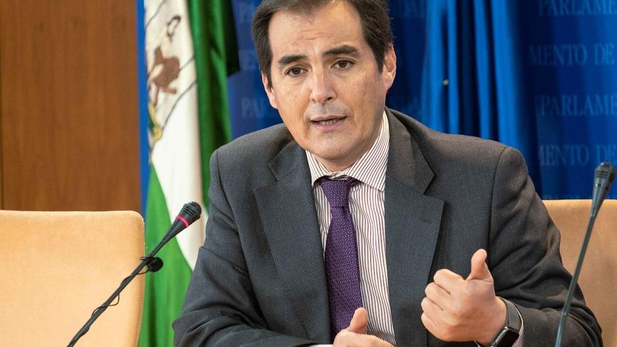 """PP-A no ve motivos para adelanto electoral en Andalucía y considera que Vox está instalado en su """"interés particular"""""""