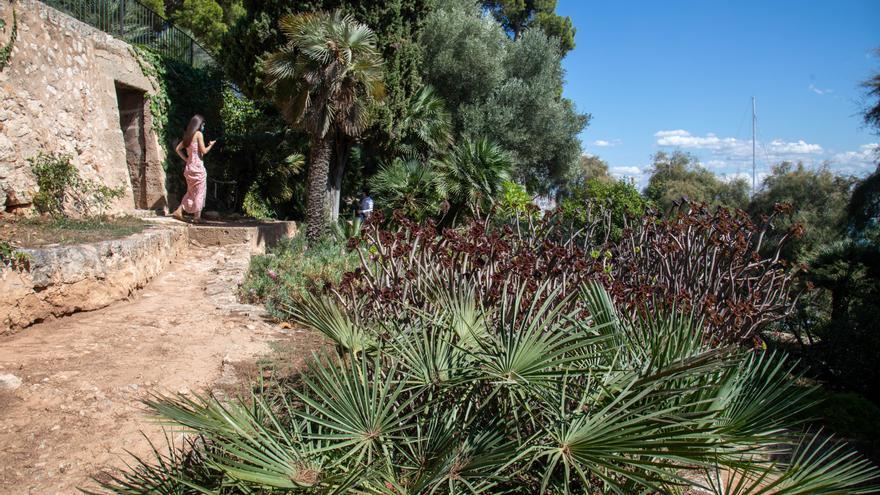 MZ-Tipp: Die Bucht von Palma de Mallorca von einem historischen Garten aus betrachten