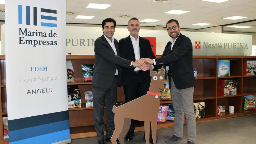 Lanzadera se alía con Nestlé para desarrollar alimentos para mascotas