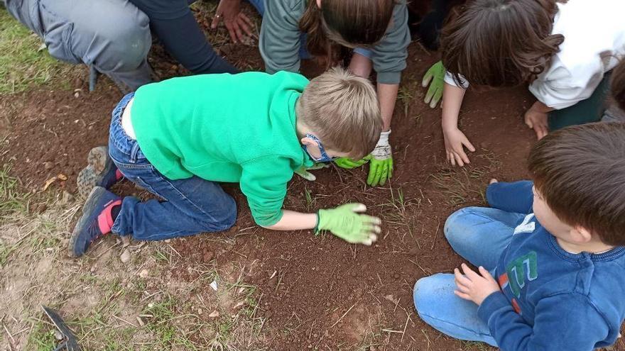 Vall de Almonacid acogerá una feria pionera de intercambio de semillas contra la despoblación