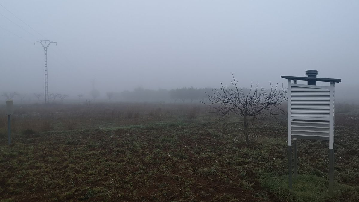 Niebla en Chiva.