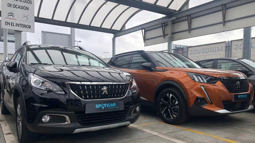 PSA Retail Vigo: Ventas privadas de vehículos de ocasión