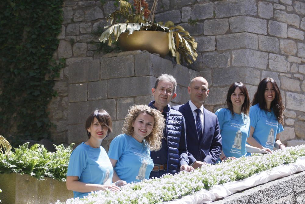 Fossat de la catedral de Girona
