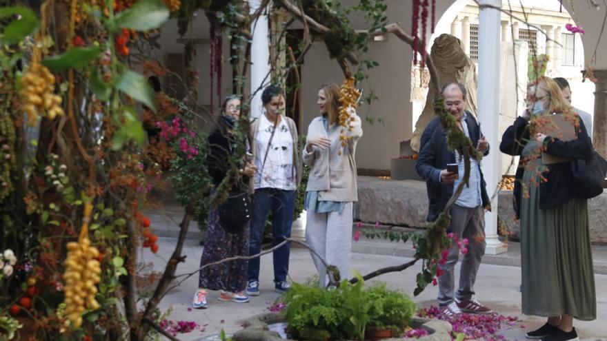 Guía básica para visitar Flora 2021 en Córdoba: horarios, espacios y artistas