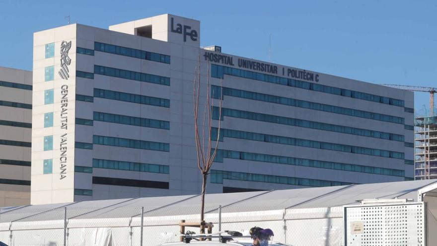 La Fe detectará para toda España la atrofia muscular espinal en los neonatos