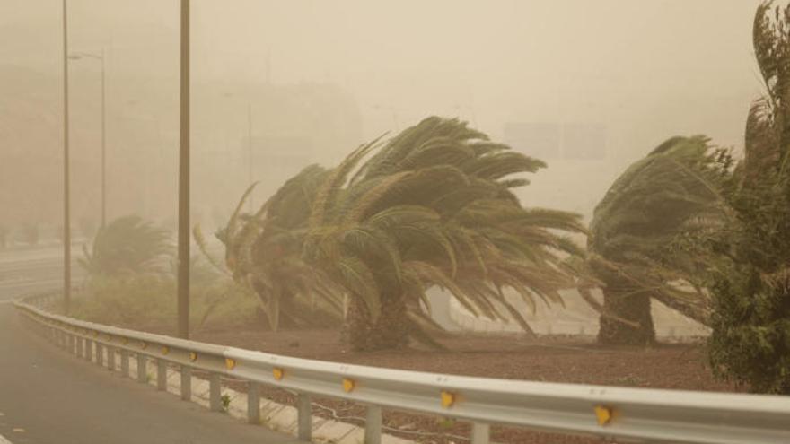 Controlados los incendios en Tenerife