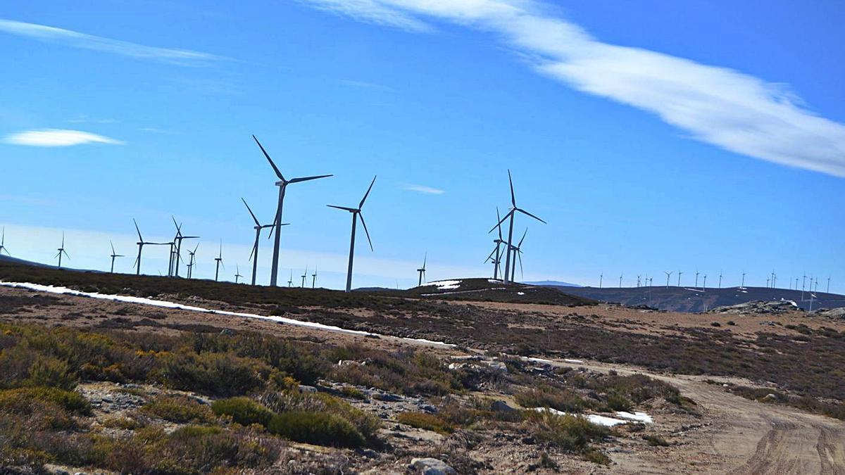 Parque eólico en la provincia de Zamora.