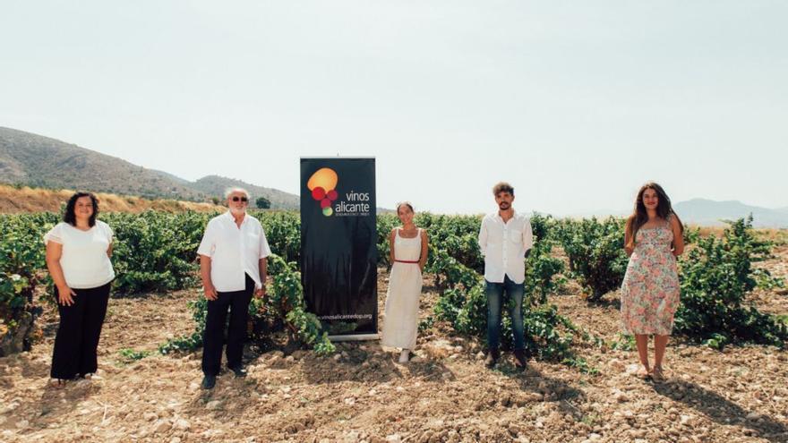 La pandemia reduce un 58% la venta de los vinos de Alicante