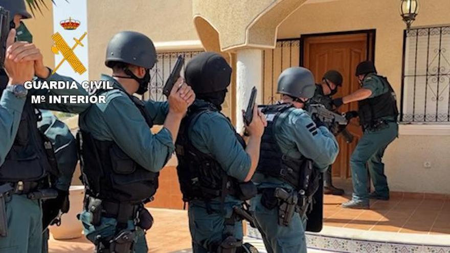 Doce arrestados con cerca de 3.000 plantas de marihuana en chalés okupados en la Vega Baja