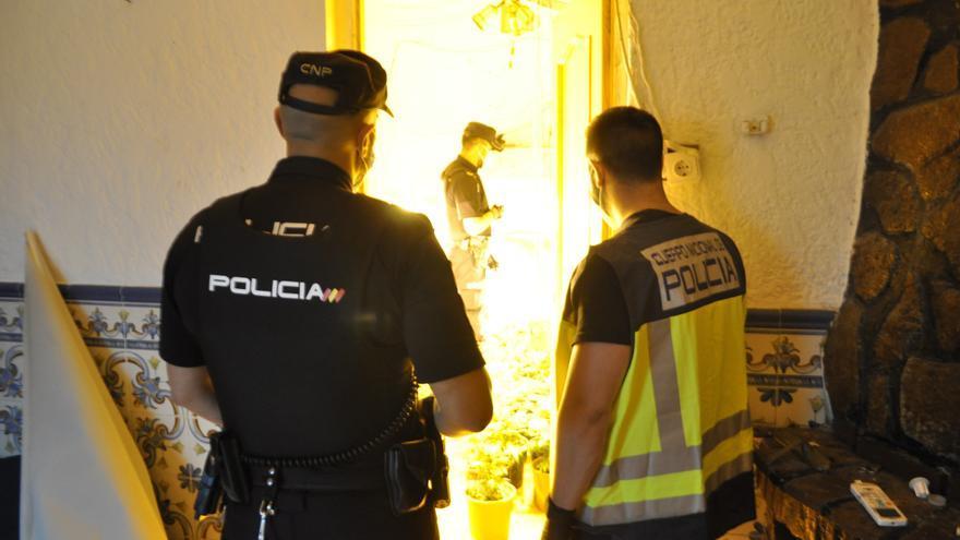 Dieciséis detenidos en Alzira al desarticular una banda dedicada al cultivo de marihuana a la que se atribuyen numerosos robos