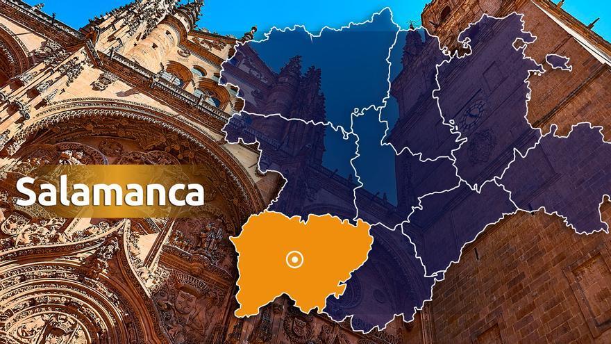 40 buitres atacan a una vaca y pican los ojos del ternero que estaba pariendo en Salamanca
